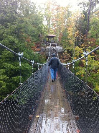 best of State park bridge Swinging