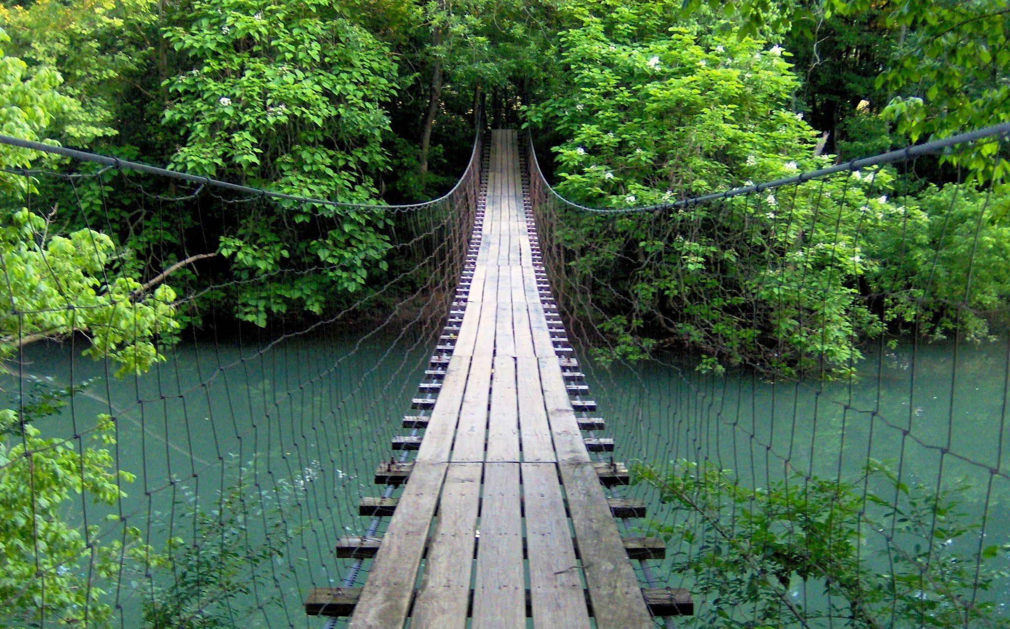 Bigs reccomend Swinging bridge state park
